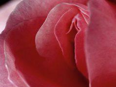 6 modi per avere una vagina giovane nel tempo senza chirurgia