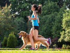allenamento con cane