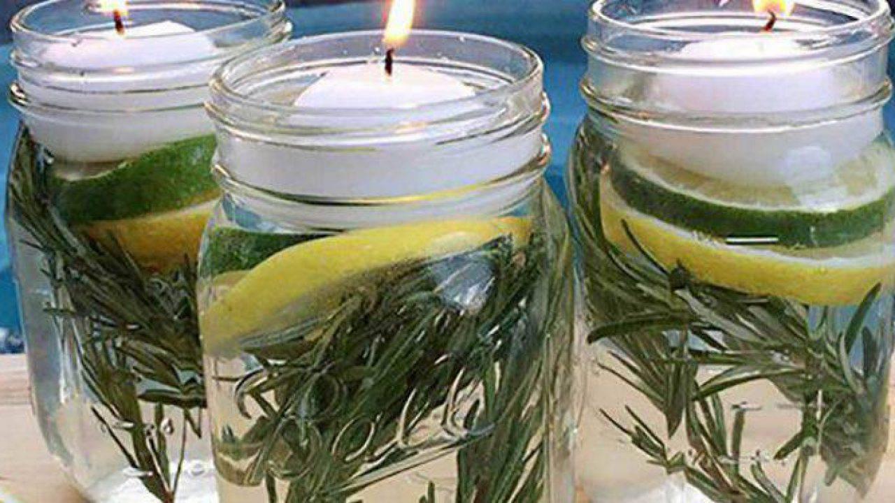 Repellente Naturale Per Vespe l'astuzia a base di limone per tenere lontane da casa le zanzare