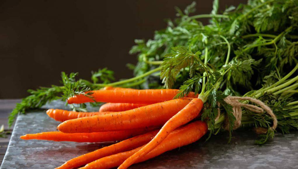 Cosa cucino oggi? Menu completo con le carote-VIDEO-