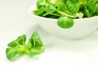 insalata songino