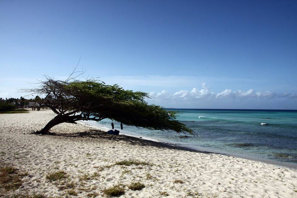 Aruba tra le spiagge più belle del mondo
