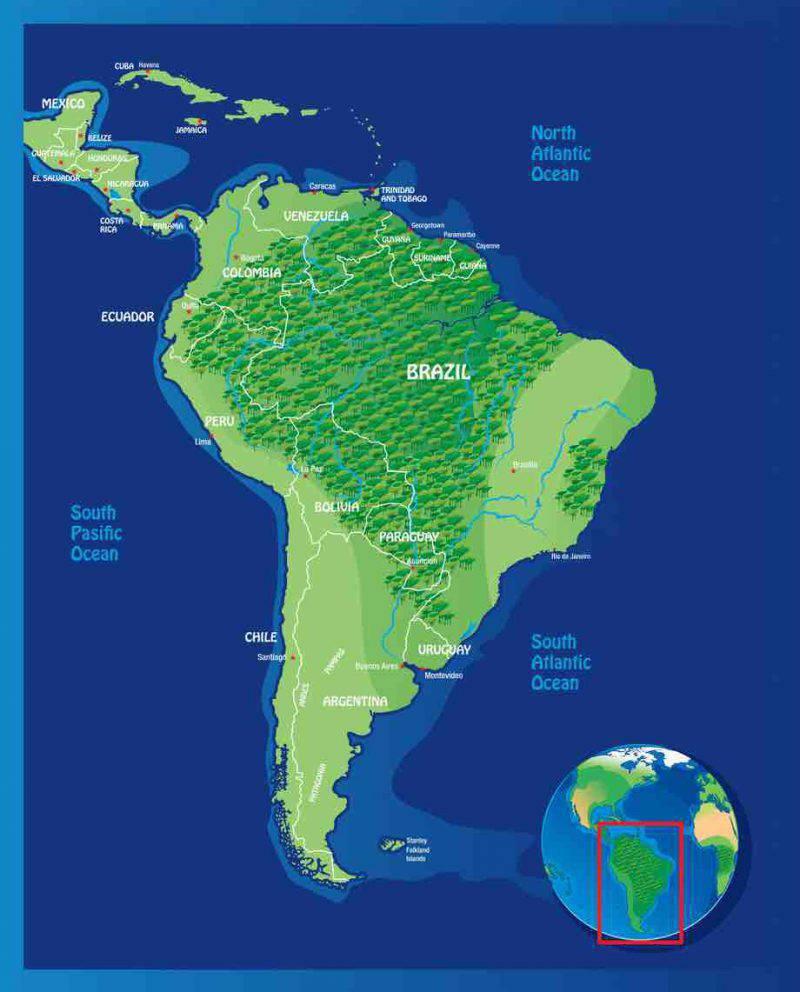 foresta amazzonica  brasile e non solo  tutte le info