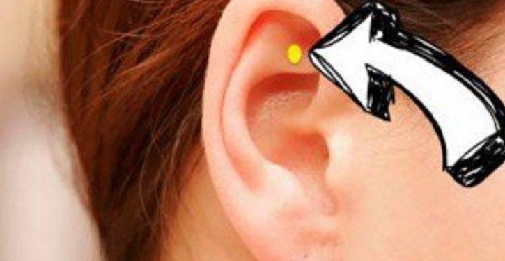 Agopuntura auricolare, scopri tutti i benefici per la salute