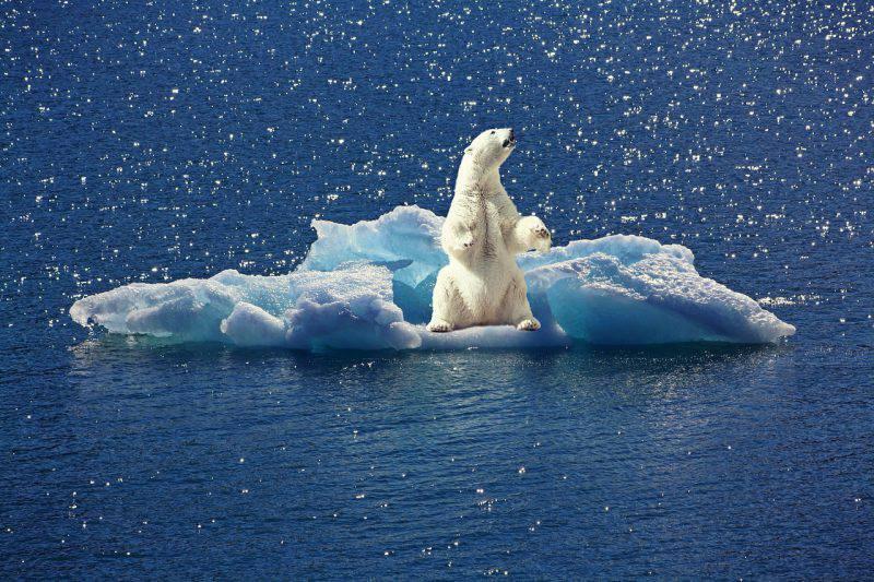 Riscaldamento globale: scioglimento ghiacciai