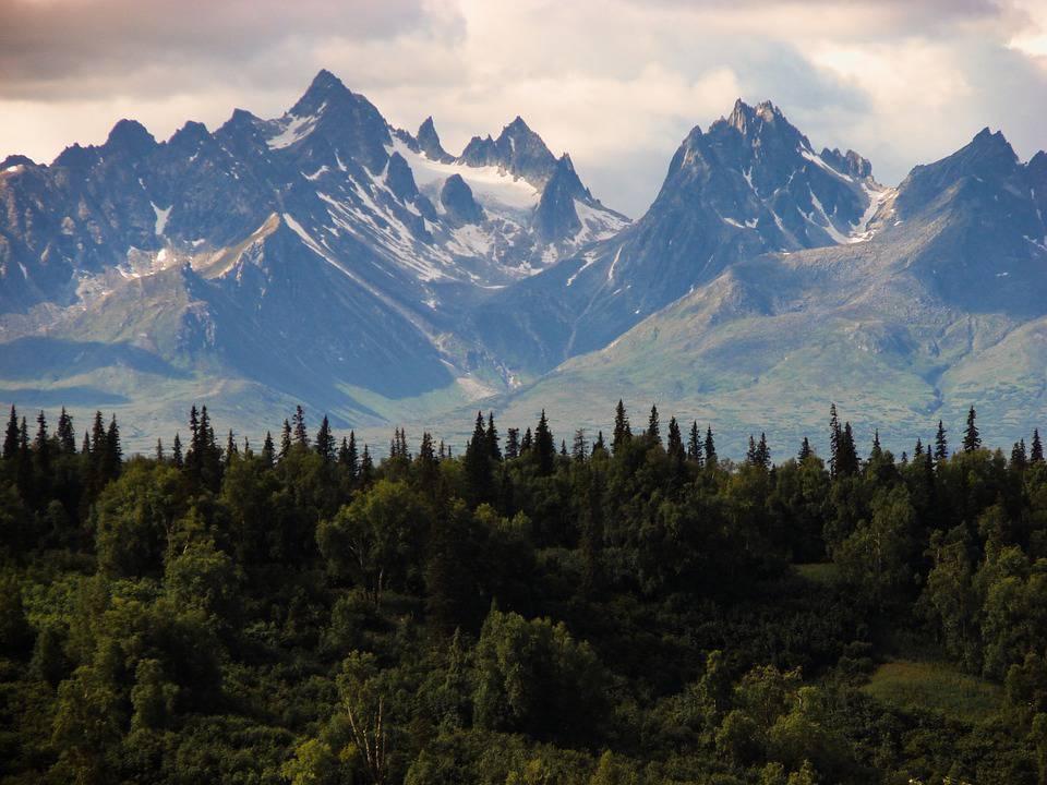 deforestazione Alaska