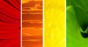 Esistono 4 tipi di personalità definite da 4 colori: qual' è la tua?