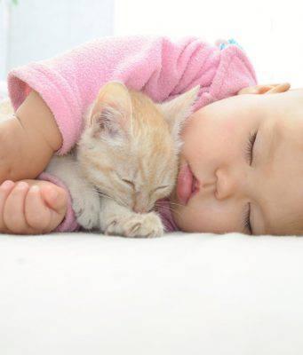 Gatti e bambini, i luoghi comuni da sfatare