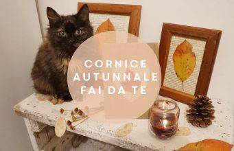 Diy: come fare un portafoto autunnale con le foglie-VIDEO-