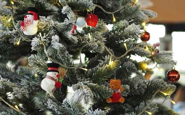 Covid, Natale diverso. Massimo Galli invita ad acquistare online i regali