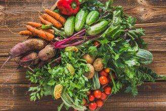 perderò peso con una dieta vegetale