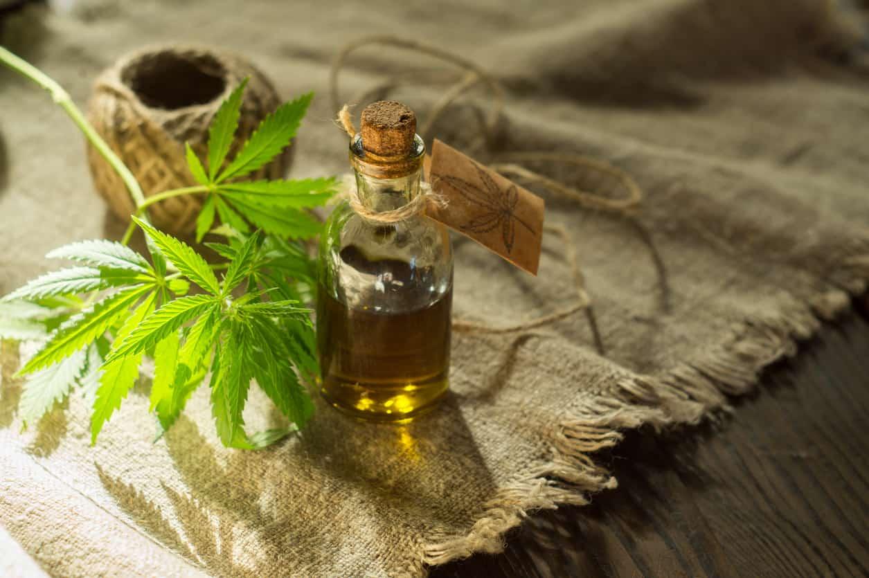 Olio di Canapa, alleato per la bellezza della pelle