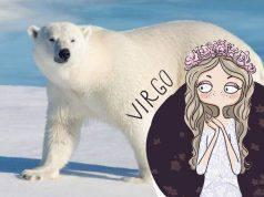 Astrologia: lo spirito animale che governa ogni segno zodiacale
