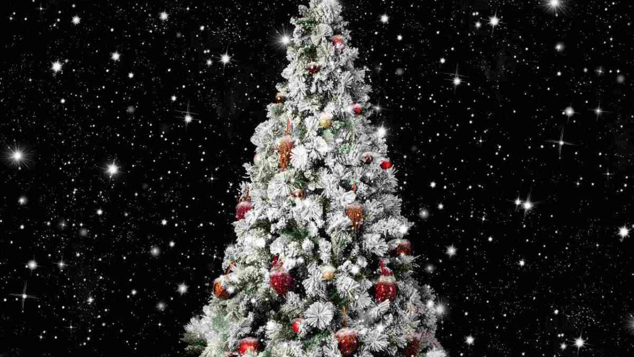 Palline Di Natale Con Rametti albero di natale innevato | come abbellirlo e renderlo elegante