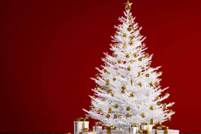 Albero Di Natale Bianco.Albero Di Natale Bianco Tutti I Suggerimenti Per Abbellirlo