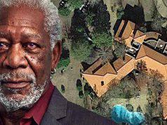 Morgan Freeman trasforma la sua casa in un santuario per salvare le api