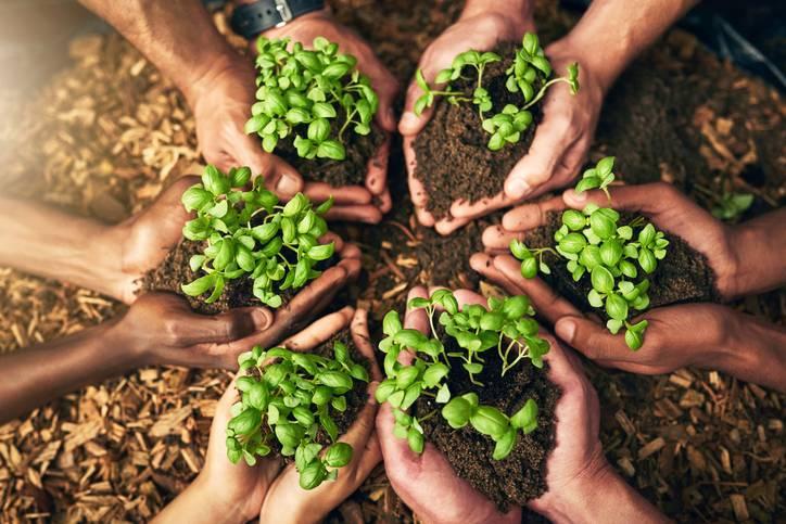 Green lifestyle | Contro lo spreco alimentare