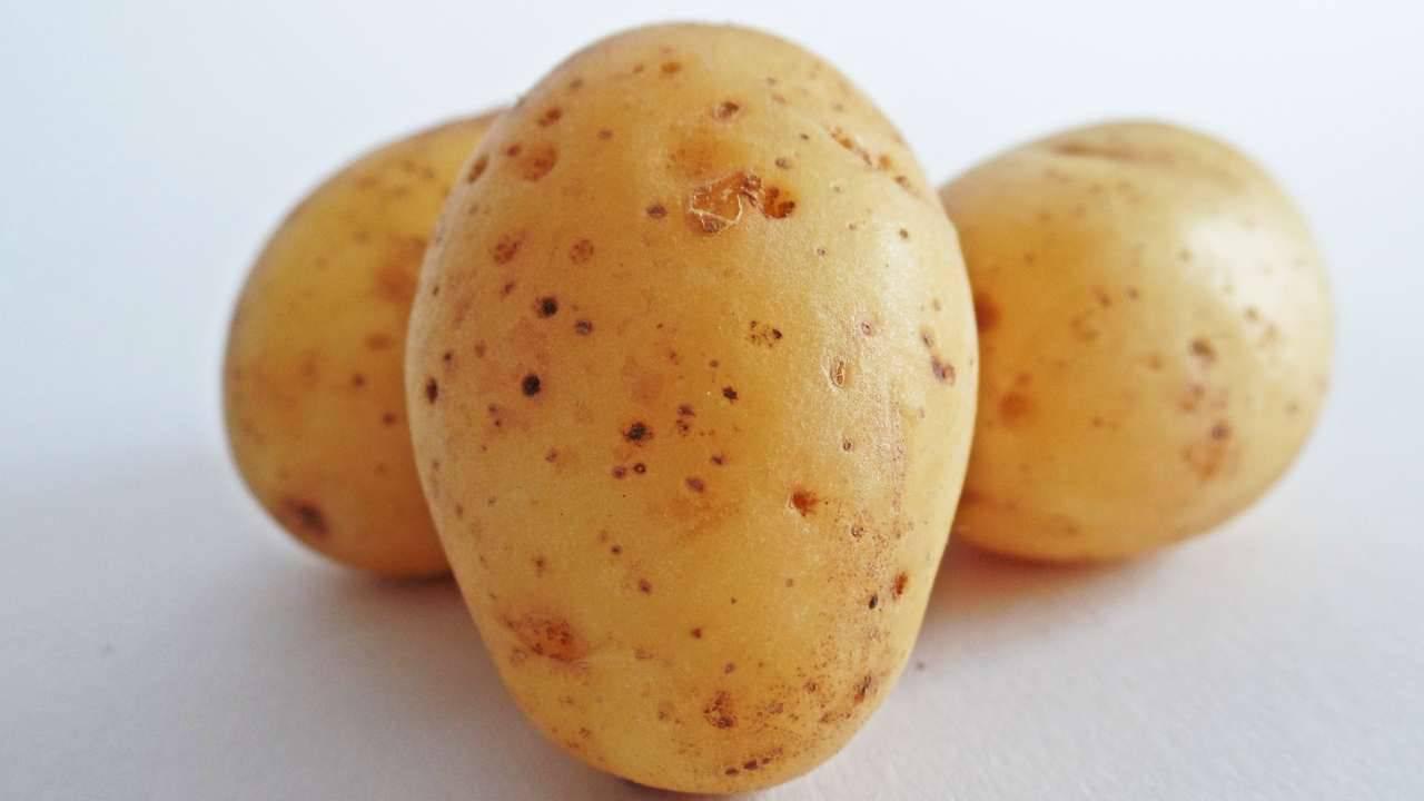 Crocchette di zucchine, patate e tonno