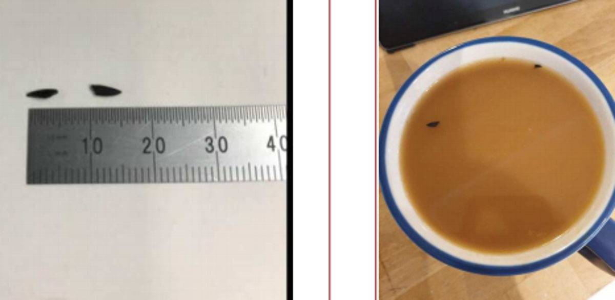 plastica nel caffè