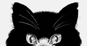 test gatto topo