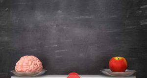 cervello e mela