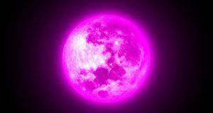 luna segni zodiacali
