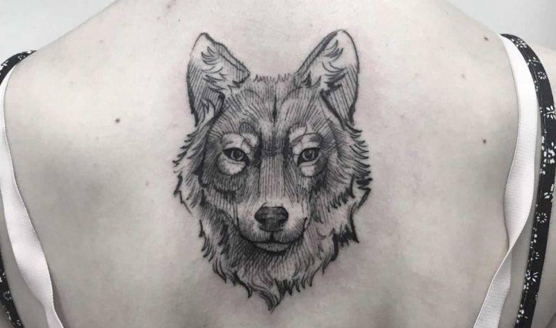 Significato Tatuaggio lupo