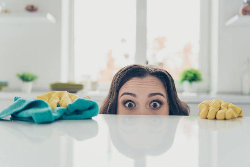 donna casalinga