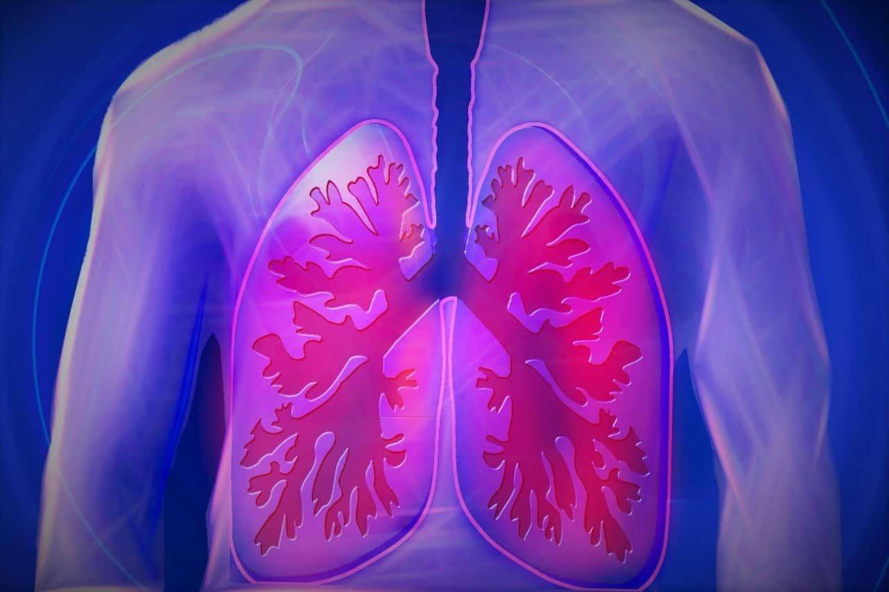 Smettere di fumare guarisce i polmoni