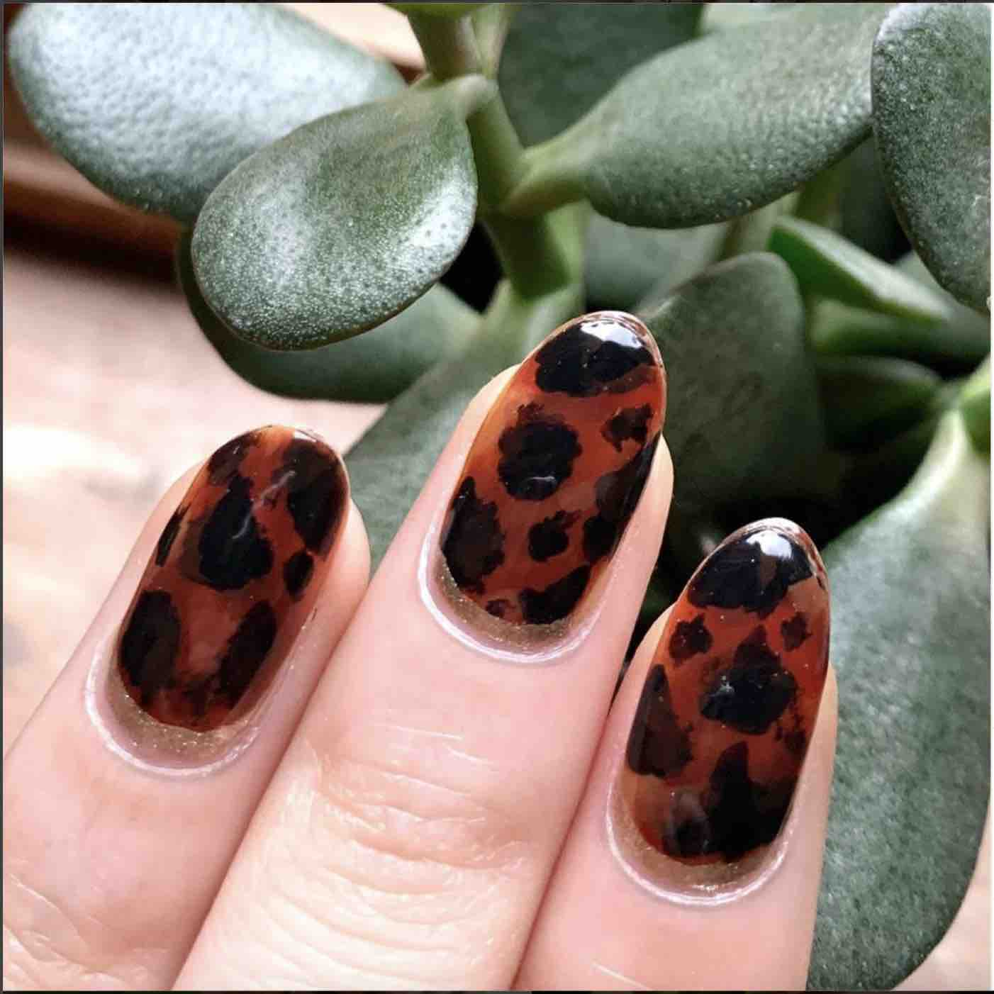 Tortoise Shell Nails manicure