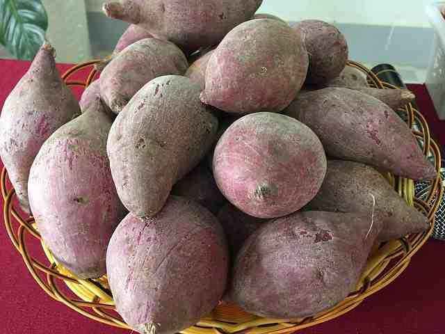 Varietà patate