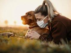 Covid-19 | il contagio negli animali e come pulire le zampe