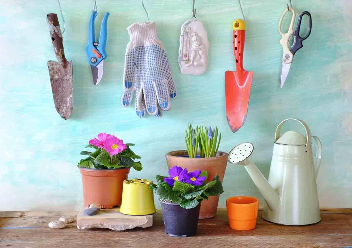 giardinaggio benefici