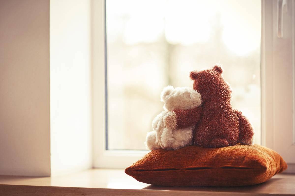Orsi abbracciati alla finestra