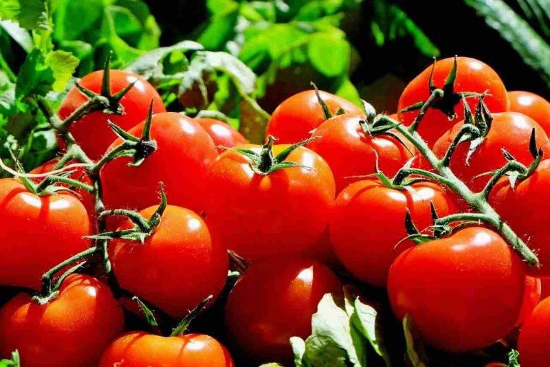 Verdura e frutta,