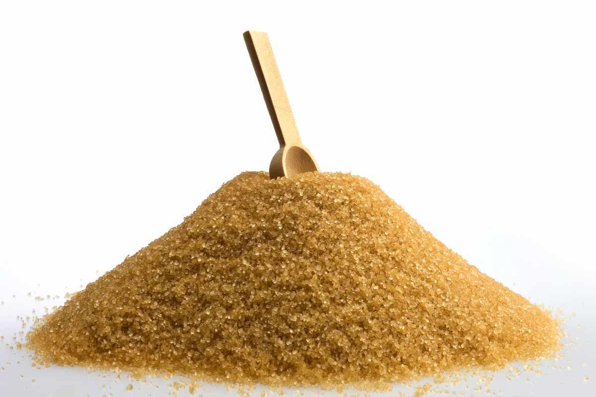 zucchero integrale di canna