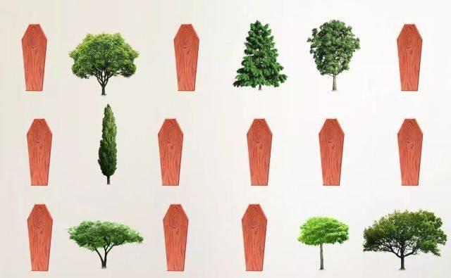 albero della morte