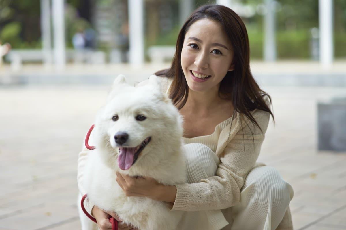 In Cina il cane diventa animale domestico