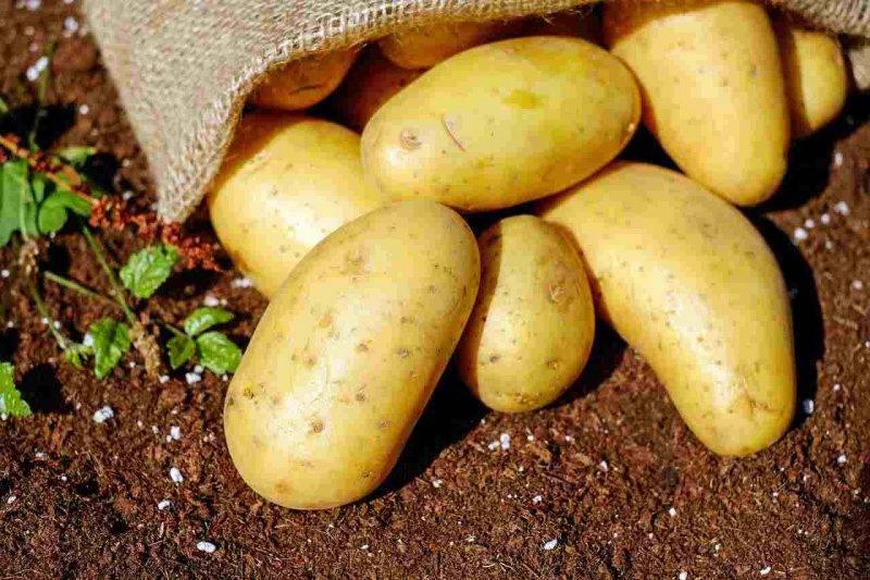 patate usi alternativi