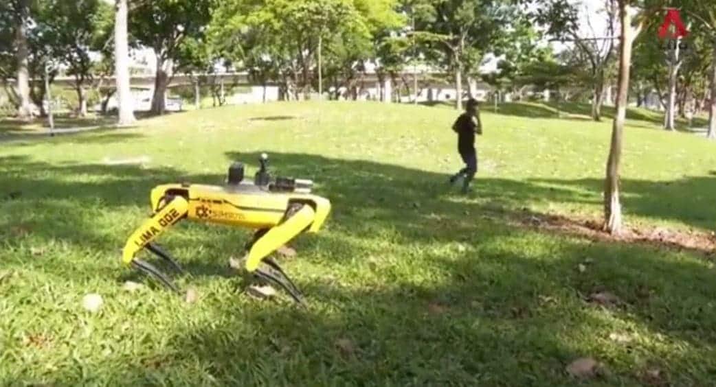 covid-19 spot cane robot singapore
