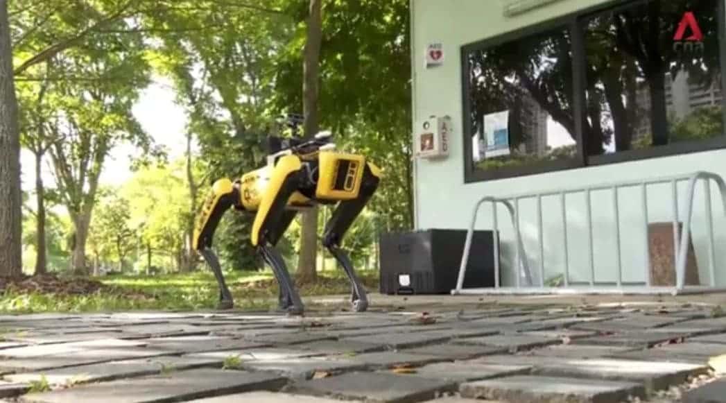 Spot cane robot per mantenere distanziamento sociale