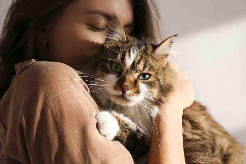 donna che ama il suo gatto
