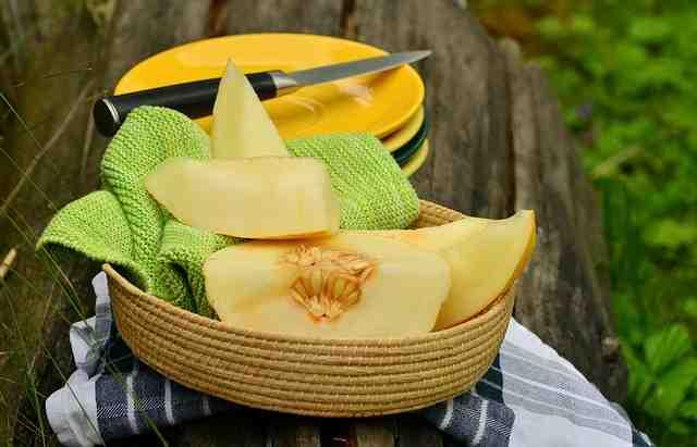 proprietà del melone