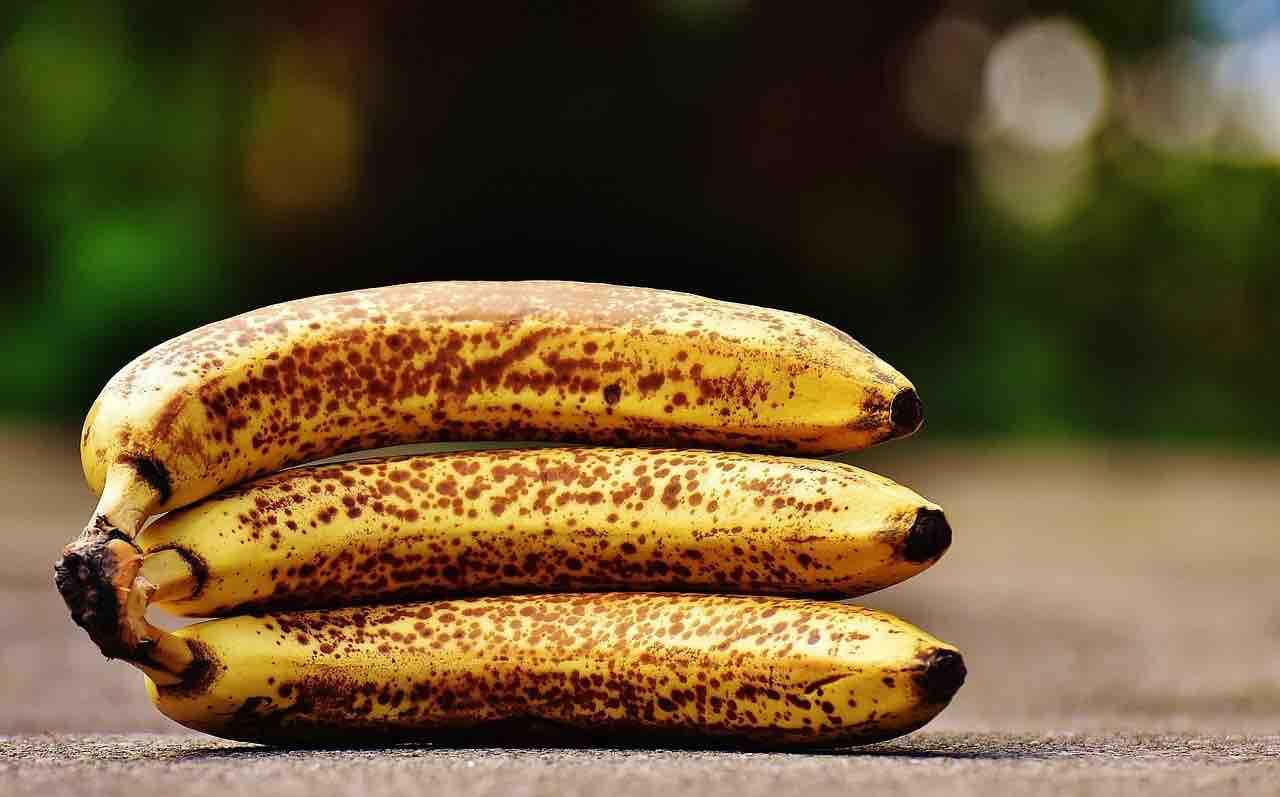 casco banana