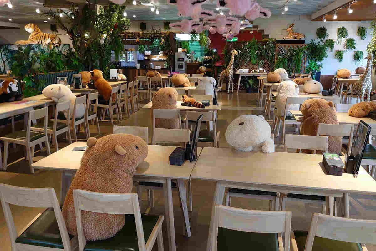 capibara e peluche al tavolo