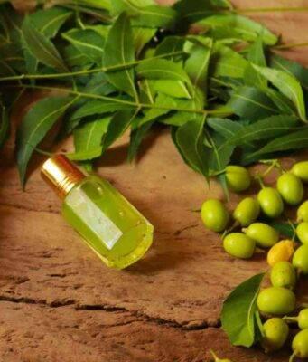 Olio di Neem   8 utilizzi che forse non conosci