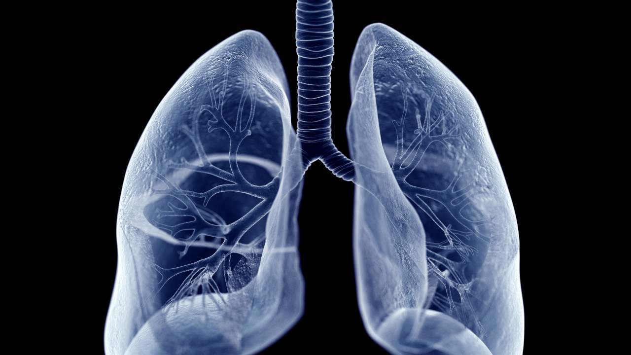 trapianto polmoni coronavirus