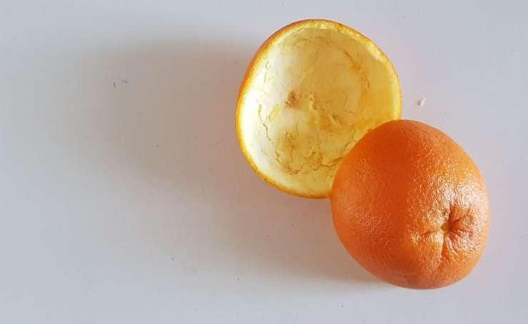 ricette buccia arancia