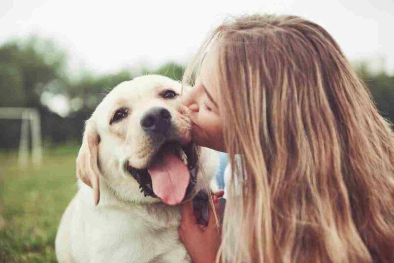Cosa percepisce il cane