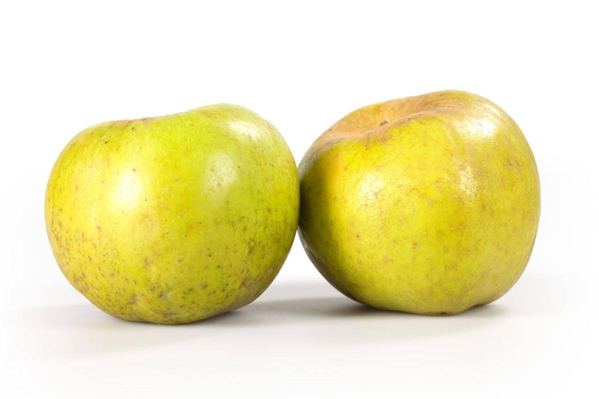 due mele renette